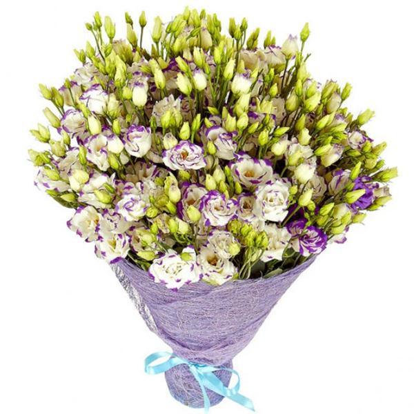 51 Purple Lisyantus Bouquet