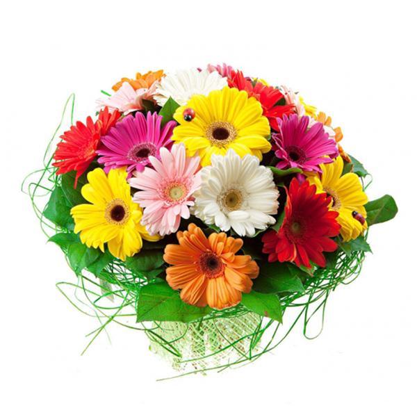 19 Mixed Color Gerbera bouquet